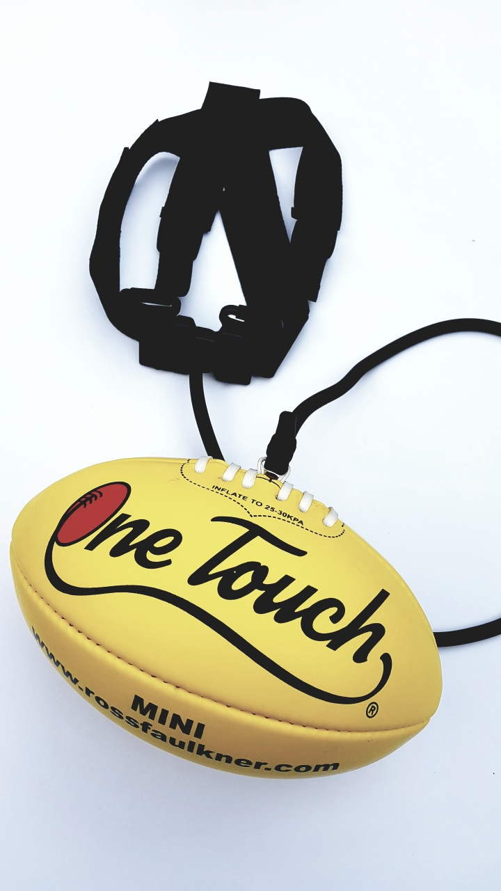 One Touch Training ball Mini size